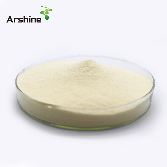 Soybean Protein Concentrate