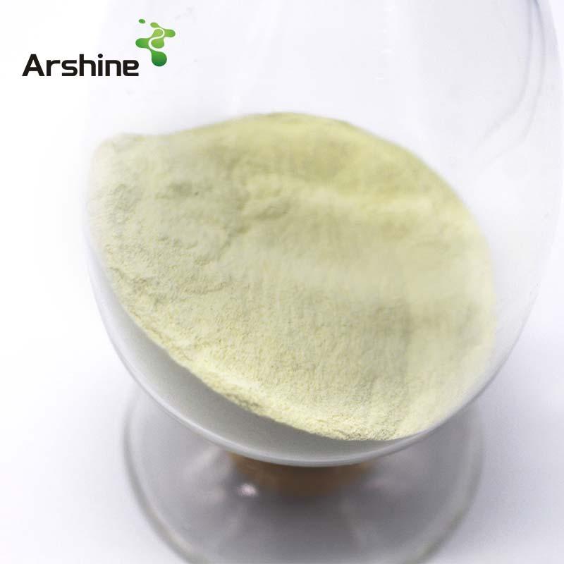 Collagen CAS 9064-67-9